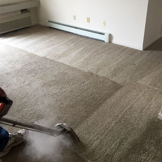 Xtreme Cleaning Sanilac County Michigan Professional
